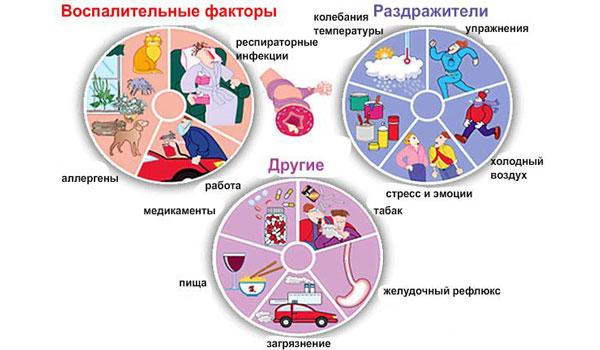 Воспалительные факторы астмы