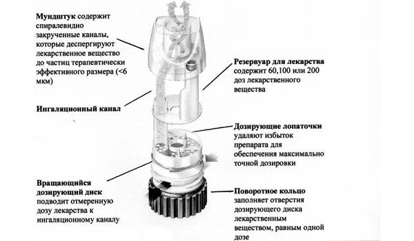 Строение порошкового ингалятора