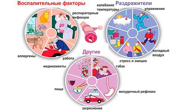 Схема атопической бронхиальной астмы