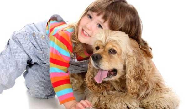 Какие собаки подходят для аллергиков и астматиков: отзывы собаководов