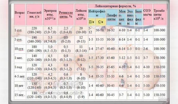 Показывает ли анализ крови пневмонию медицинская справка 082 скачать